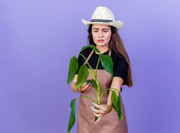 Triste bella ragazza giardiniere in uniforme che indossa cappello da giardinaggio tenendo e guardando la pianta isolata su sfondo blu