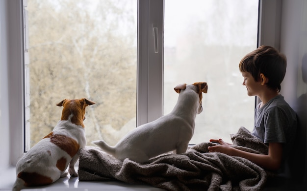 Sad little boy and dogs look out the window