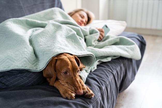 Грустная женщина, лежа на диване с собакой, используя смартфон, ожидая звонка парню или сообщения, чувствует себя подавленной