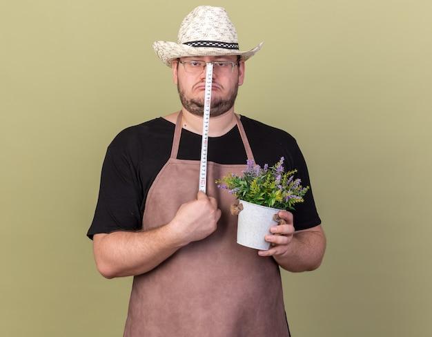 オリーブ グリーンの壁に巻尺で植木鉢の花を測定する園芸帽子をかぶった悲しい若い男性庭師