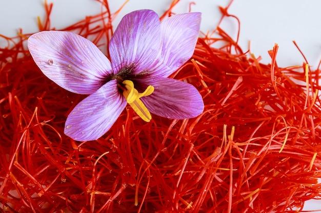 サフランの花とサフランの糸。最も高価なスパイス。