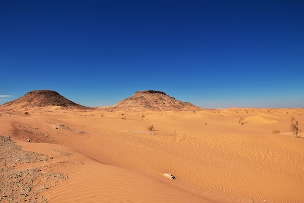 Sahara desert in the heart of africa