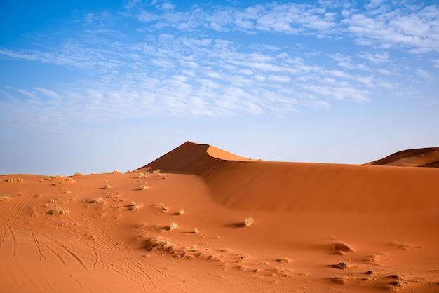 モロッコ、マラケシュのサハラ砂漠