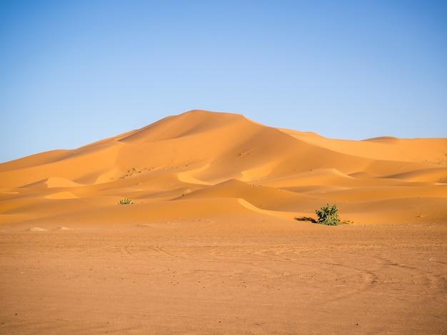 Deserto del sahara sotto la luce del sole e un cielo blu in marocco in africa