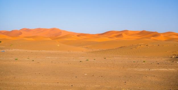 日光とアフリカのモロッコの青空の下でサハラ砂漠