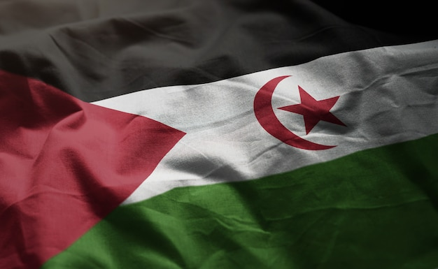 Sahrawi flag rumpled close up
