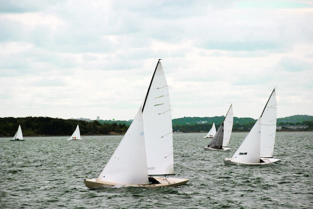 Sailboats sail on the blue sea