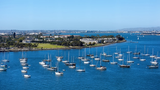 Sailing boats in waterfront area. san diego cityscape