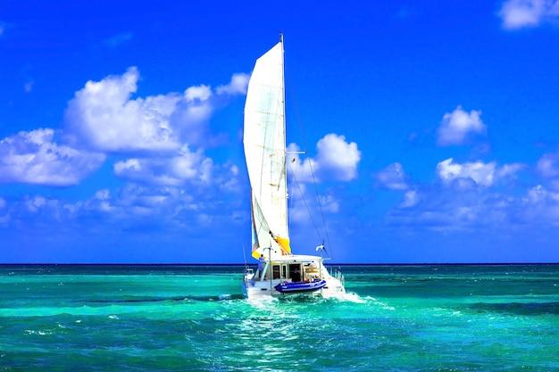 Sailing catamaran in open sea in sunny weather