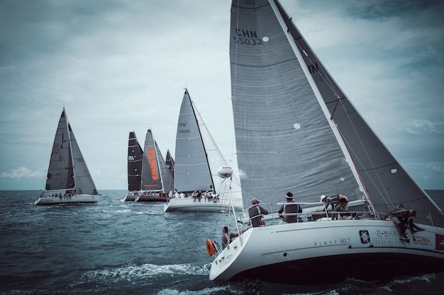 Sailing regatta in the sea