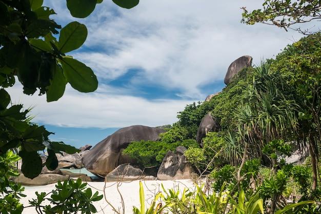Ориентир ориентир утеса плавания на острове ко симилан № 8 с тропическим деревом на переднем плане в национальном парке, пханг нга, таиланд. Premium Фотографии