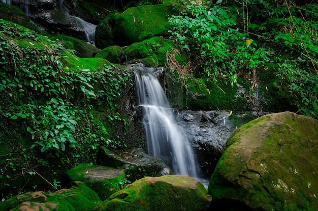 Saithip waterfall are some of the attractions of the park. beautiful waterfall in deep forest of phu soi dao national park, uttaradit provinces, northern thailand