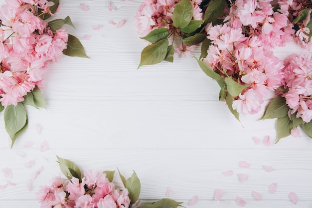 Sakura flowers and petals on wooden background