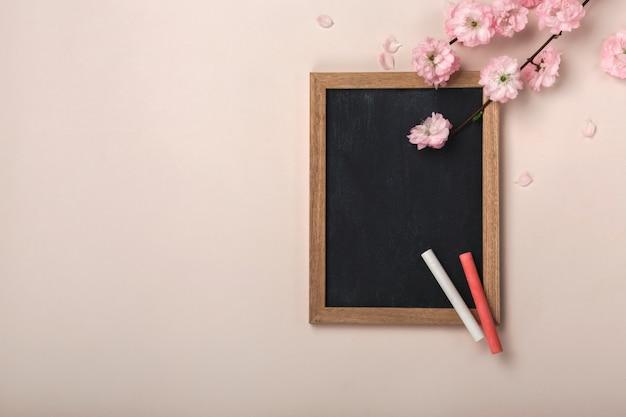 Sakura flowers with chalk board on a pastel pink background