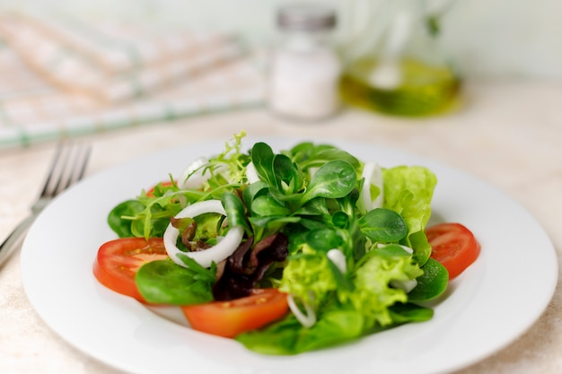 Salad of canon, lettuce and chard