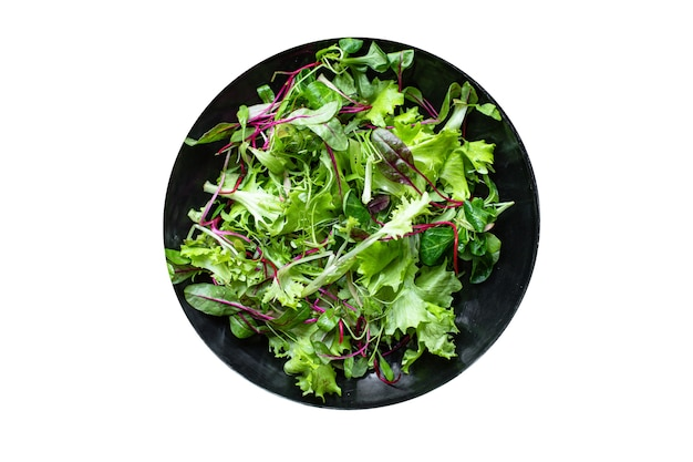 Salad green mix leaves vitamins ready to cook and eat on the table for making healthy meal