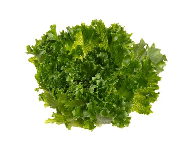 Листья салата био салат, изолированные на белом фоне.