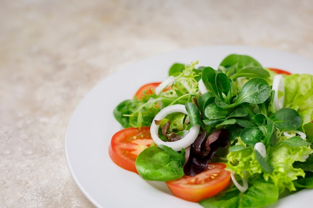 Salad of lettuce, canon and chard