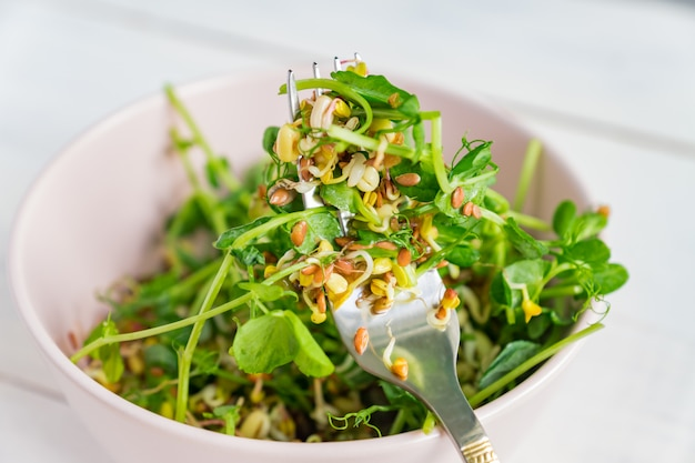 Salad made of peas microgreen sprouts and sprouted beans in a bowl on grey