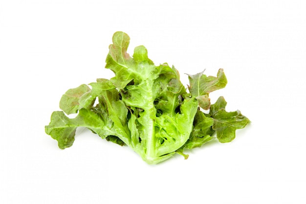 分離された白のサラダ野菜