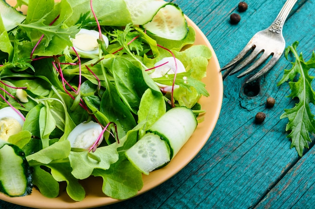 Salad with mix salad leaves