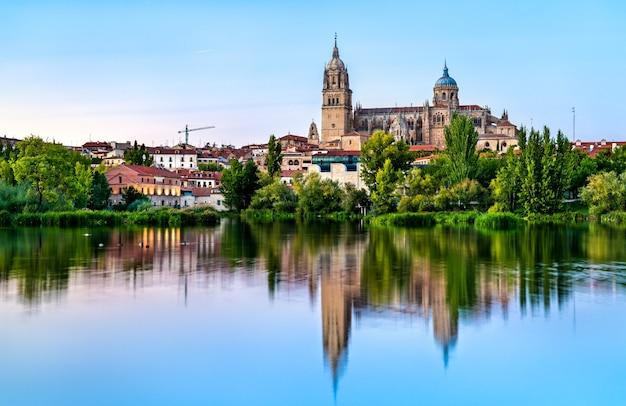 スペインのトルメス川に映るサラマンカ大聖堂