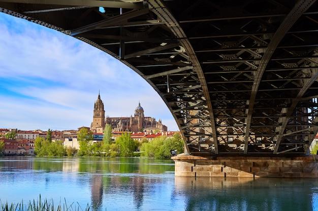 Salamanca skyline in enrique estevan bridge