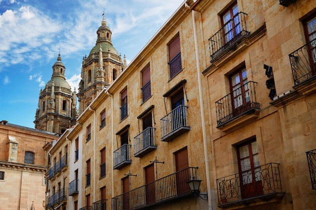 Salamanca university and clerecia church spain