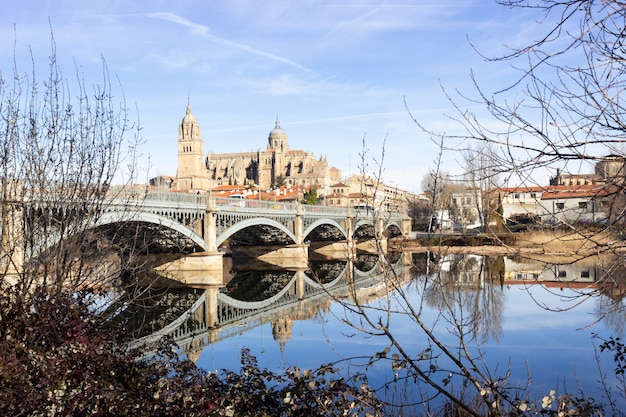 Salamancaspain  january  view of the historic city of salamanca with new cathedral and the iron bridge called enrique estevan over the tormes river