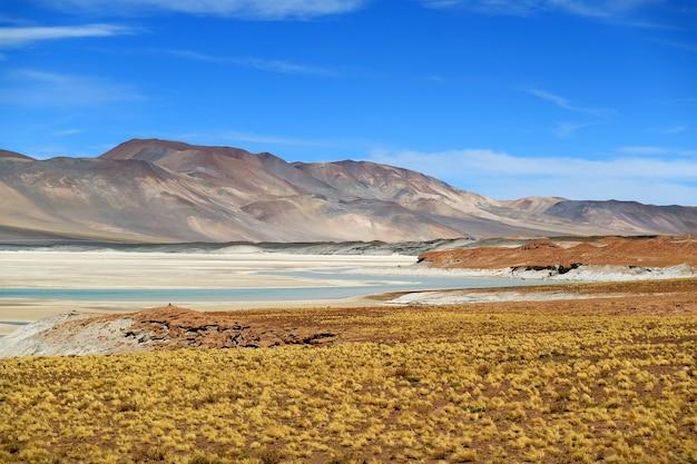 Salar de talar, part of high plateau salt lakes