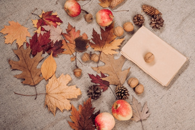 Sale for black friday. place for your text. ready for text. leaf fall trend and autumn vogue. autumn design and decor. slogan or product.