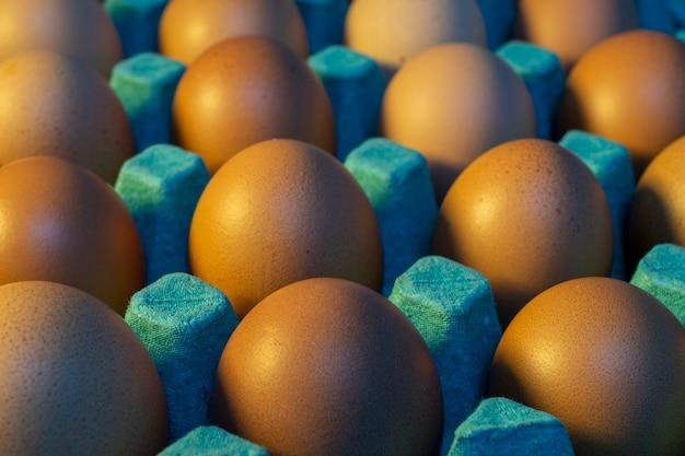 방목 계란 판매