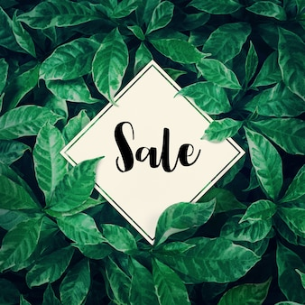 Продажа с зелеными листьями фона дизайн с белой бумагой. плоская планировка. вид сверху листьев. природа концепции