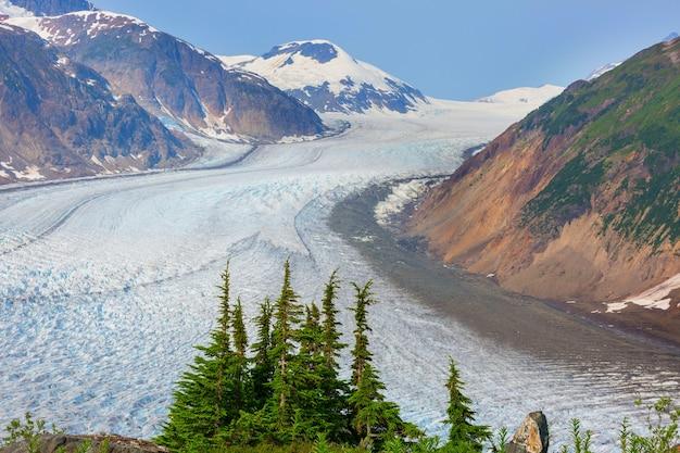 Ледник лосося в стюарте, канада