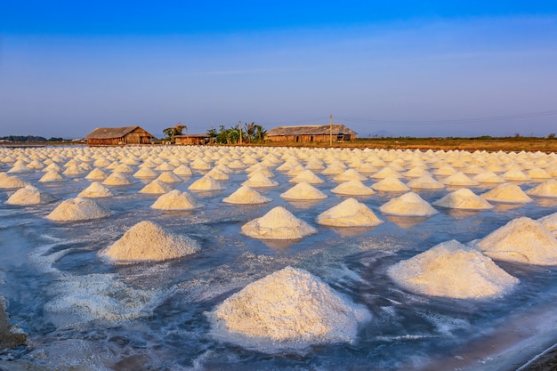 Salt industry in the morning light at phetchaburi province,thailand