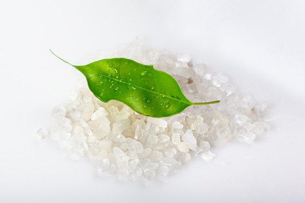 Salt or sea salt with green leaf