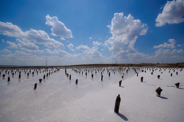 Salt on wooden log in water salt lake. salt lake baskunchak, russia