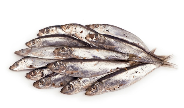 Salty fish sprat isolated on white surface