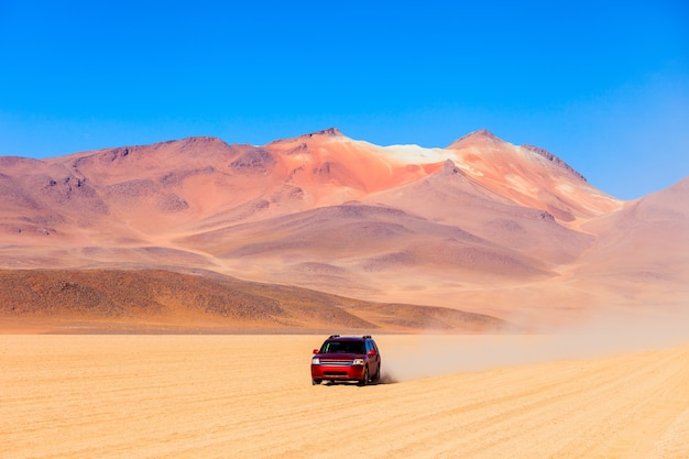 Salvador dalã desert
