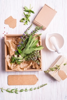 Salvia, thyme and hyssop in kraft cardboard box