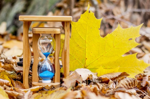 秋の森の砂時計と大きな黄色いカエデの葉