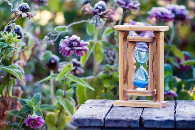 霜で覆われた百日草の花の上の砂時計