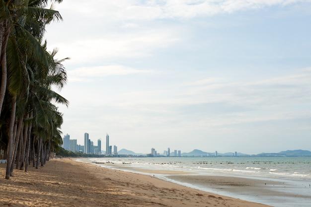Береговая линия песка лонг-бич с пальмами. тропический город.