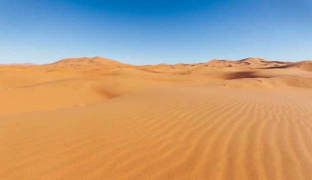 구름없이 모래 언덕과 푸른 하늘입니다. 사하라 사막, 모로코.