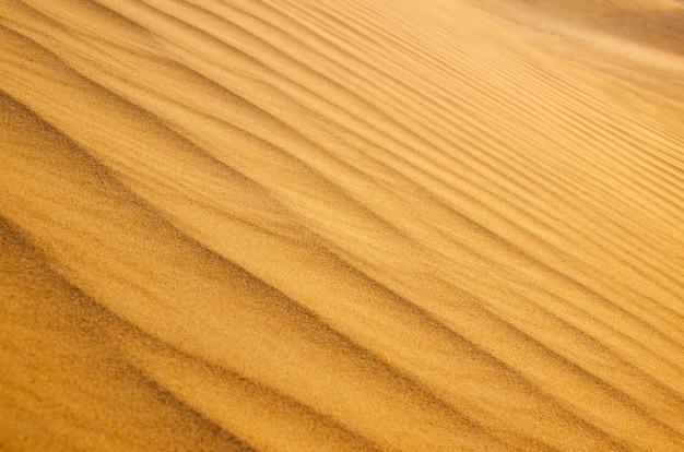 Sand dune background