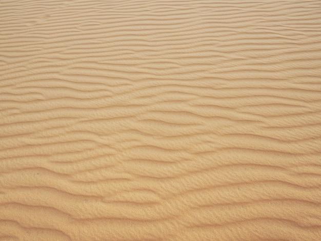 Sand dune or desert texture background.