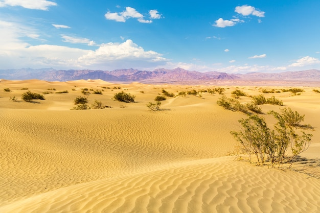 Sand dunes against mountains on background