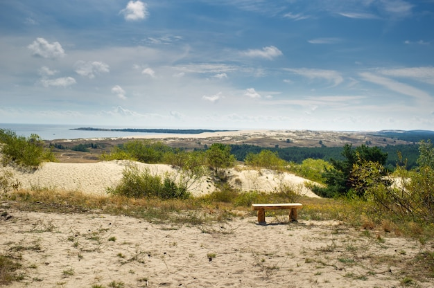Sand dunes on the curonian spit near the town of nida. klaipeda, lithuania