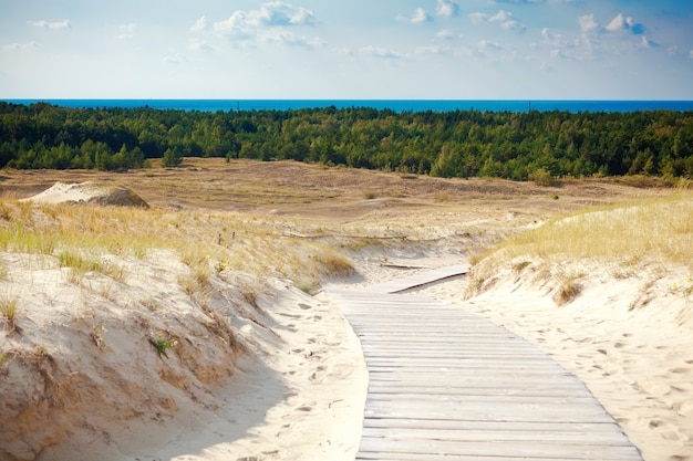Sand dunes not far from nida in lithuania