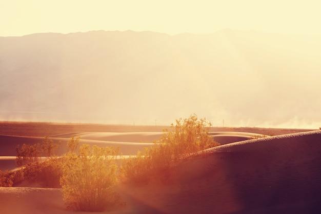 米国カリフォルニア州デスバレー国立公園の砂丘